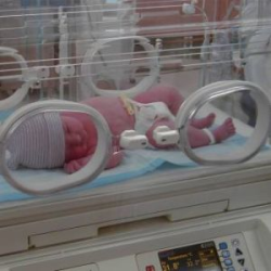 View this image in original resolution: Incubatrice neonatale